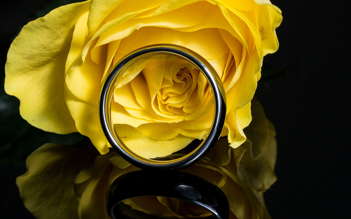 Wedding ring and yellow rose at a wedding in Raleigh, North Carolina