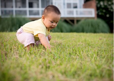 A baby plays in the grass at a family portrait session at Lake Hogan Farms in Chapel Hill, NC