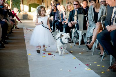 A flower girl walks down the isle with a bulldog at a wedding in Raleigh, NC
