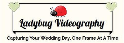 Lady Bug videoography